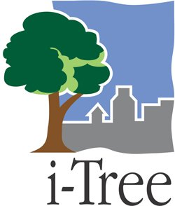 Logo_iTree_Small